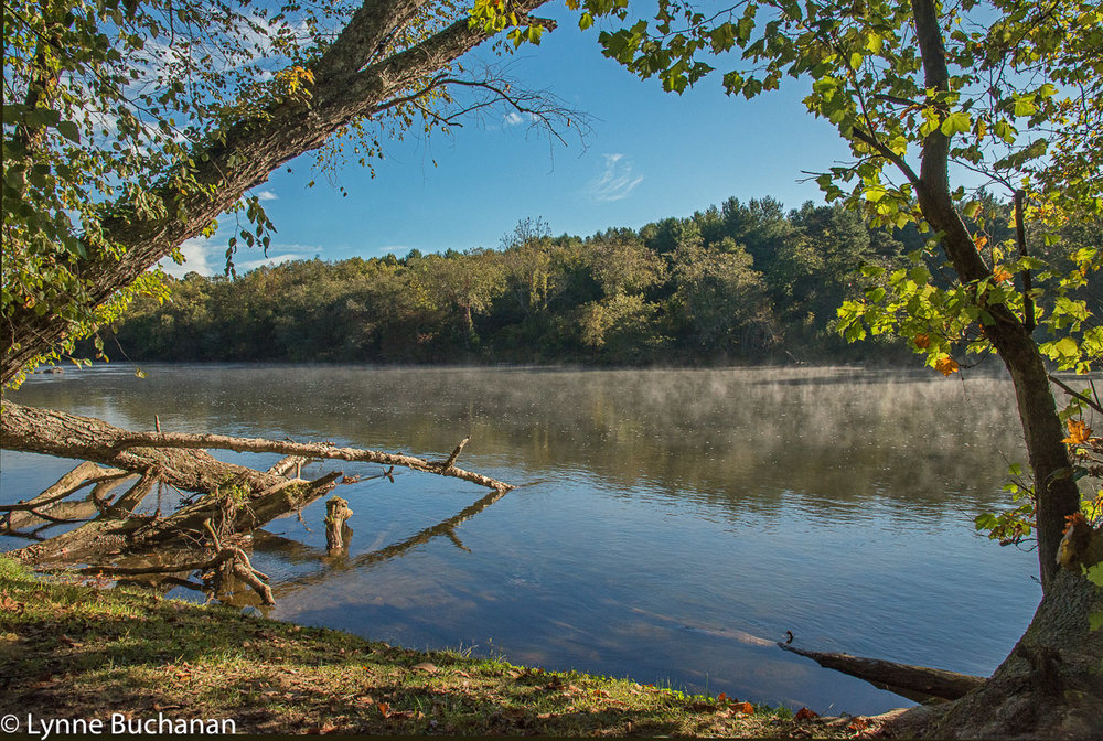 The French Broad River — Lynne Buchanan Photography